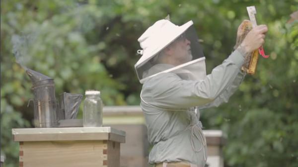 Beekeeper Chris Hewitt