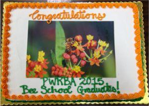 150326 Bee School Cake