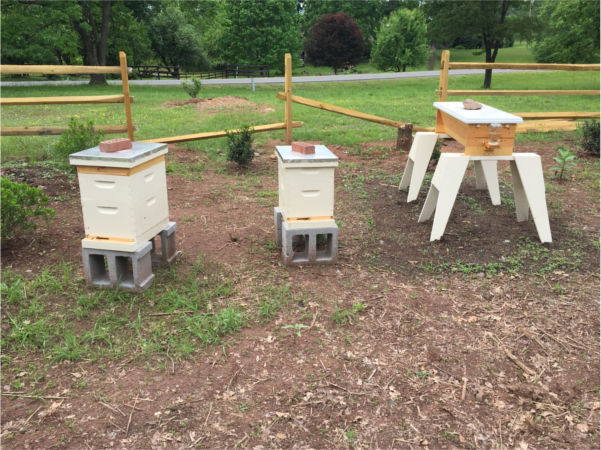 150517 Hives