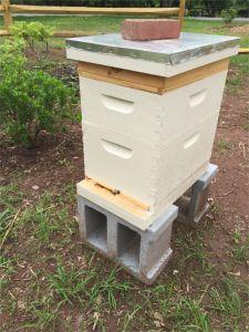 150517 R1 Hive