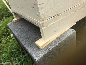 Level Hive