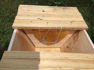 160425 Swarm Box