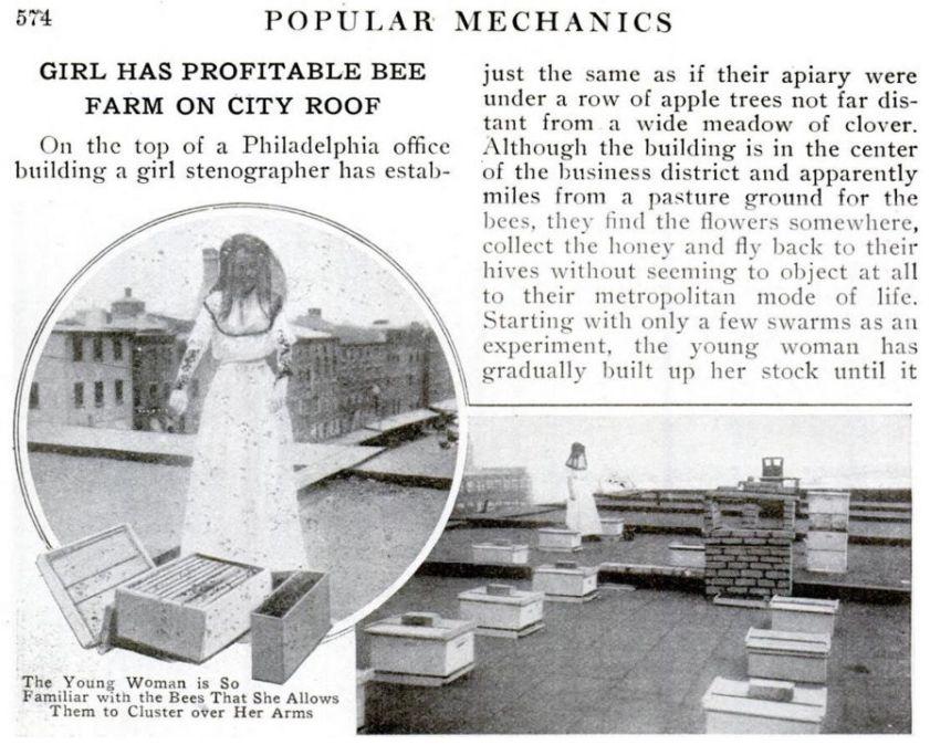 1914-girl-has-bee-farm