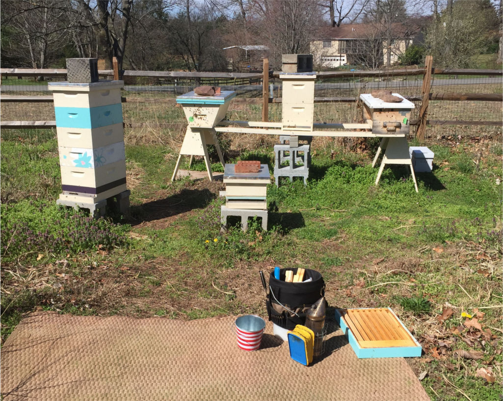 170402a Apiary